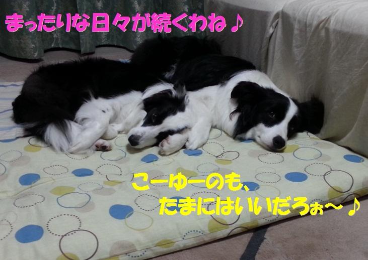 c0147241_1884577.jpg