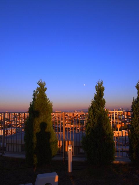 金曜日の夕焼けがすばらしかった!_e0167593_1174713.jpg
