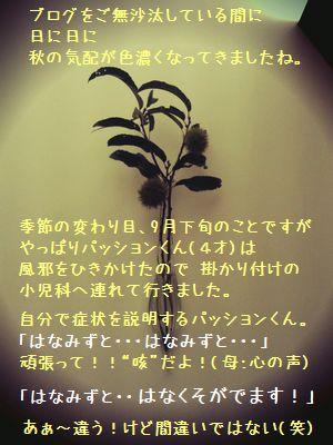 b0153703_142454.jpg