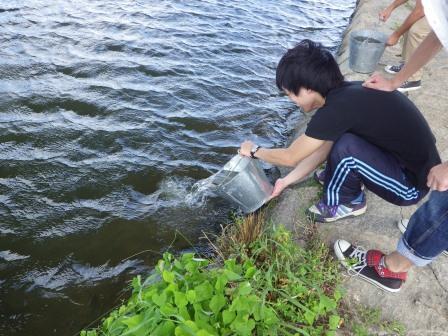 第10回城北ワンド・イタセンパラ再生活動実施報告_a0263106_137429.jpg