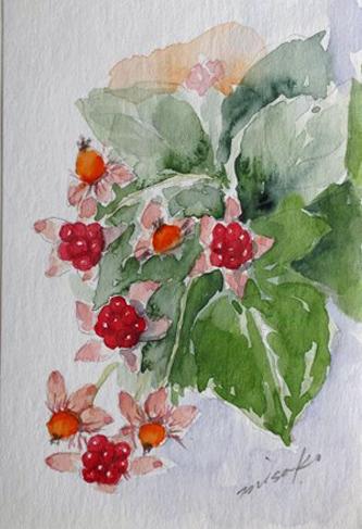 「水彩画Misako花のパレット」のMisakoさん登場!_c0039735_23591769.jpg