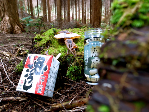 2012年9月『南九州ツチノコの旅』【4】_e0071652_19315542.jpg