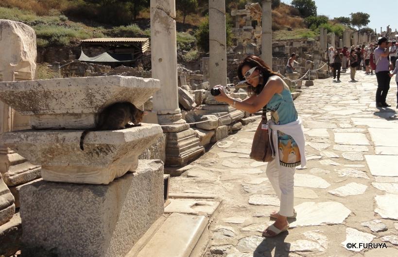 トルコ旅行記 4  古代遺跡 エフェス_a0092659_18494462.jpg