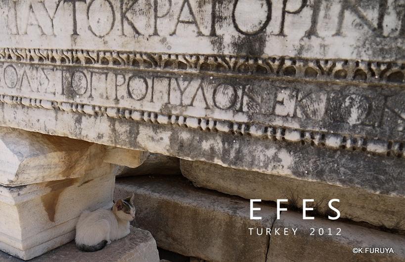 トルコ旅行記 4  古代遺跡 エフェス_a0092659_18515254.jpg