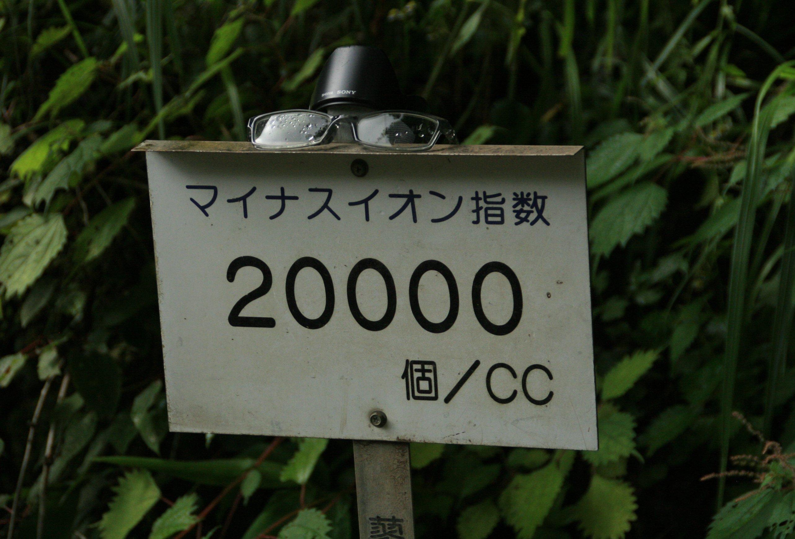 d0030373_20203871.jpg