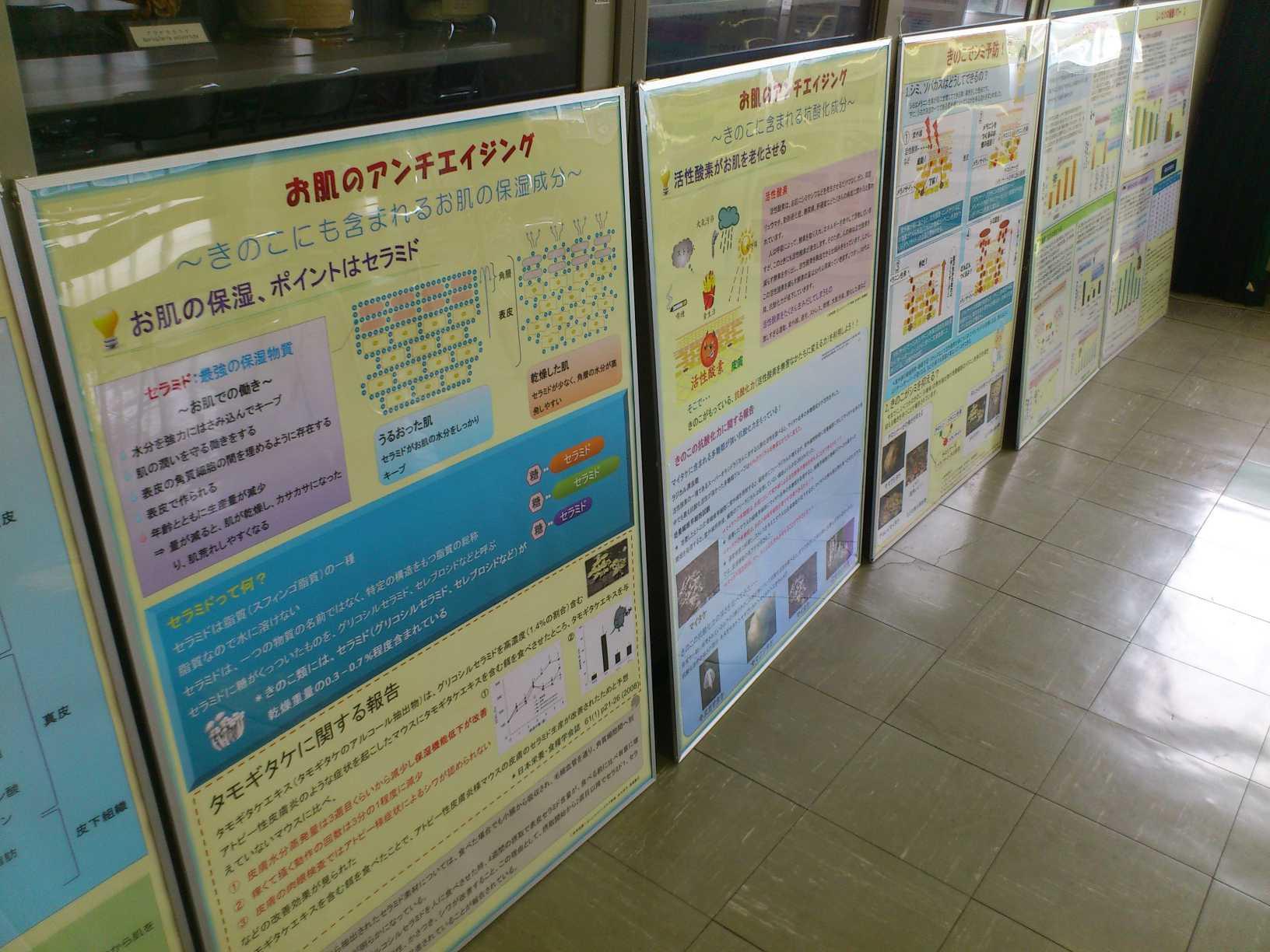 きのこ祭り・「きのこの健康・美容パワー」ポスターの準備_a0284279_12354011.jpg