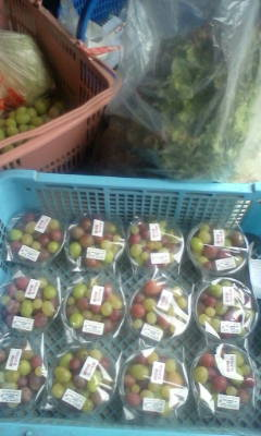 野菜厨房Zenの食材の準備中_d0026905_6582247.jpg
