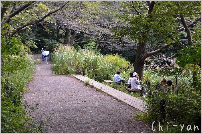 都心のオアシス 「自然教育園」_e0219011_19585659.jpg