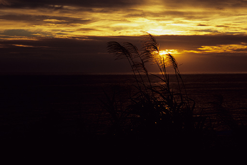 夕陽の海で終わる_b0259218_0154756.jpg