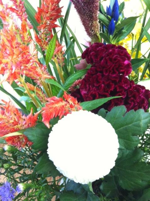 今週のお花とセール情報_a0200423_20213195.jpg