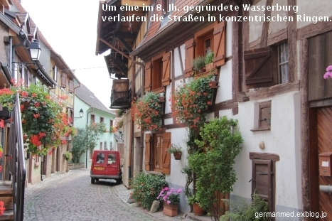 Eguisheim_d0144726_6333253.jpg