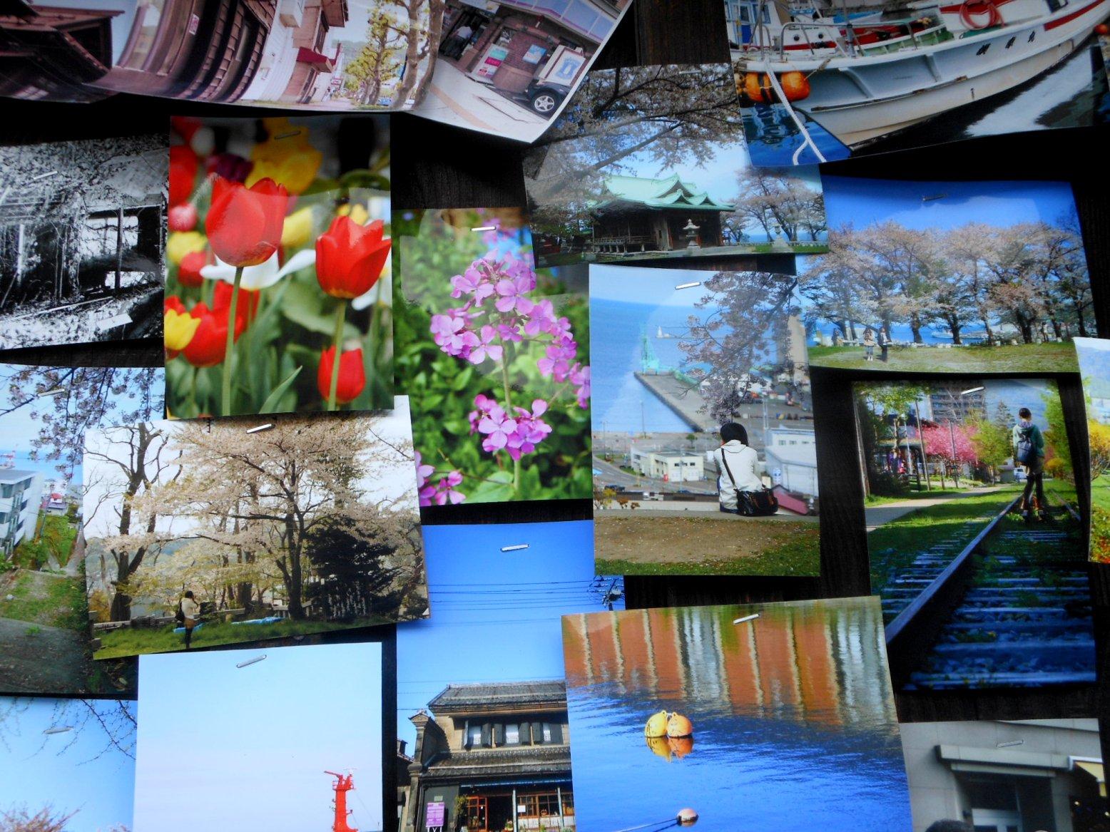 1822) 「小樽・鉄路・写真展 13th 2012」 小樽旧手宮線跡地 8月27日(月)~9月9日(日)_f0126829_9153264.jpg