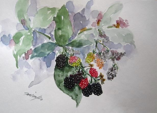 「水彩画Misako花のパレット」のMisakoさん登場!_c0039735_035212.jpg