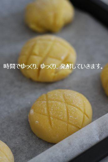 バケット&高加水リュス 酵母基本ぱんレッスン_c0162653_1111637.jpg