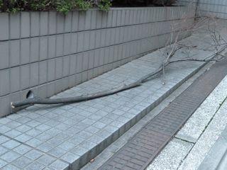 2012.10.1   台風一過_a0083571_0263881.jpg