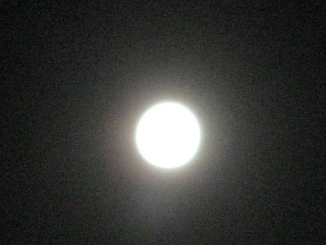 名月の夜に***_e0290872_1054318.jpg