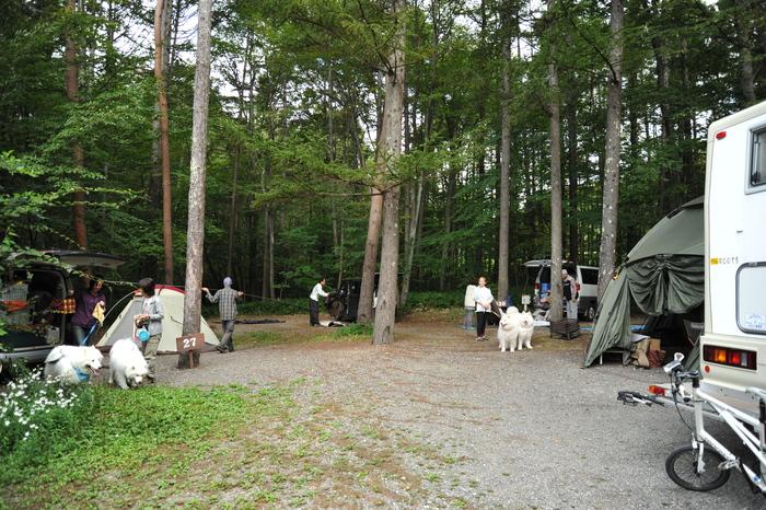 清里キャンプ&オフ会♪ part2_a0049296_20484151.jpg