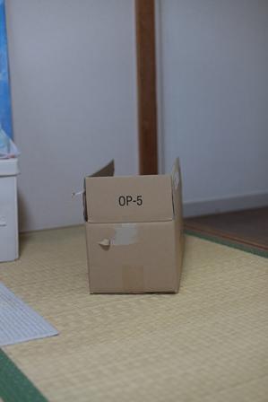 b0218806_1847173.jpg