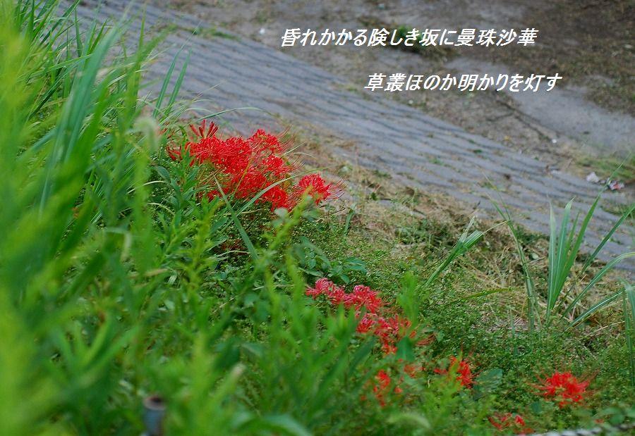 c0187781_0313820.jpg