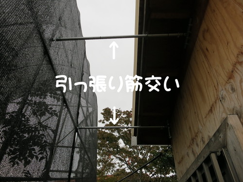 b0200291_20114839.jpg