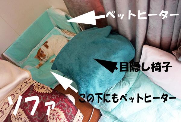 b0011962_19475142.jpg