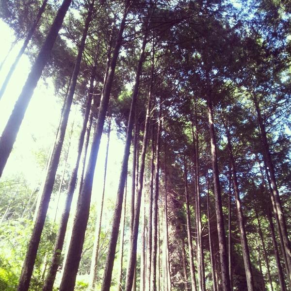 岡山へ_f0216913_4194928.jpg