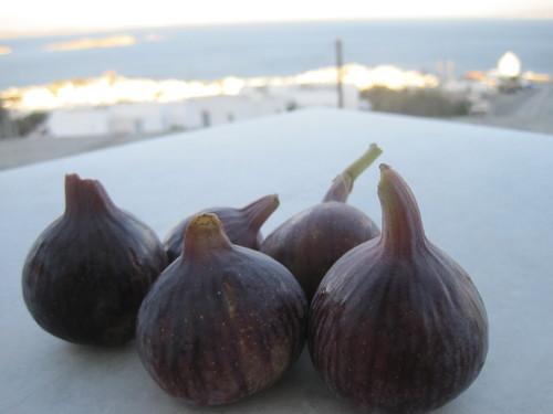 ギリシャのお料理は案外とてもおいしかったです。_e0131324_23371266.jpg