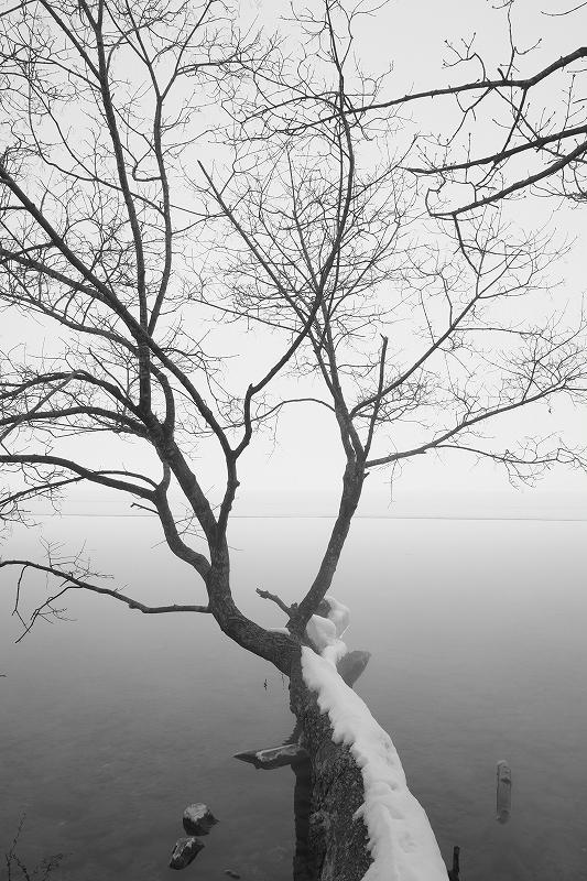 オンリーワンの作品作り 秋から冬の風景写真ワークショップ_f0050534_15405482.jpg