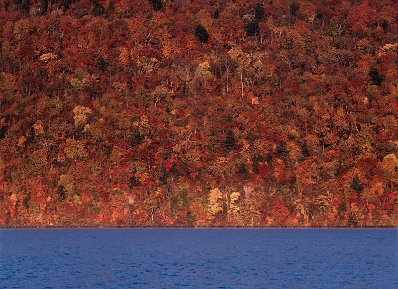 オンリーワンの作品作り 秋から冬の風景写真ワークショップ_f0050534_1541614.jpg