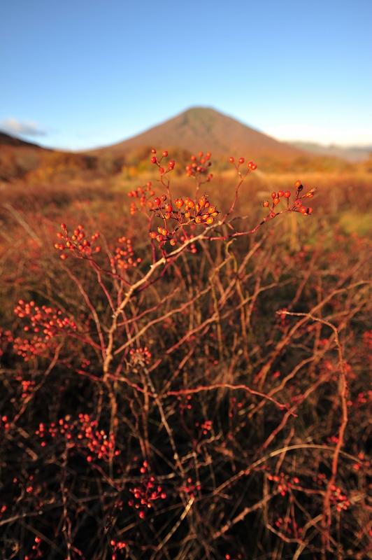 オンリーワンの作品作り 秋から冬の風景写真ワークショップ_f0050534_15424164.jpg