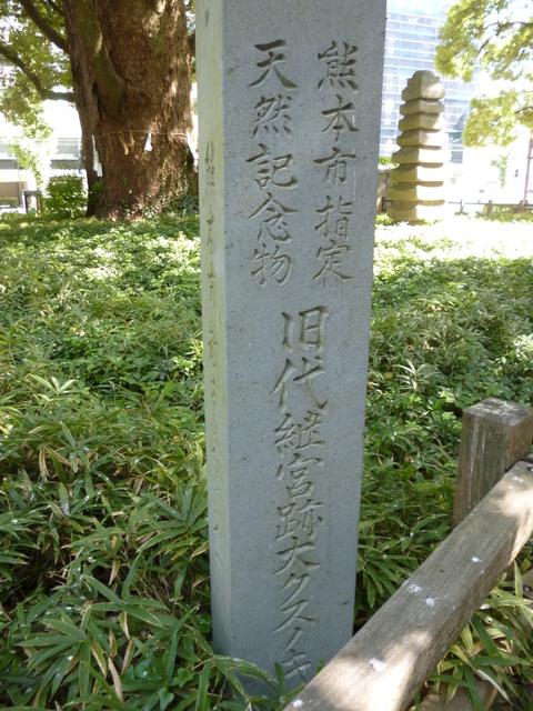 花畑公園♪_b0228113_14182511.jpg