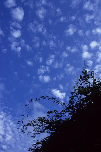 八幡平松尾鉱山跡地・2012.09.20_b0259218_5321061.jpg
