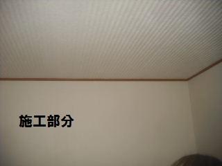 f0031037_21381363.jpg