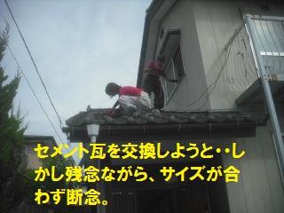 f0031037_21394994.jpg
