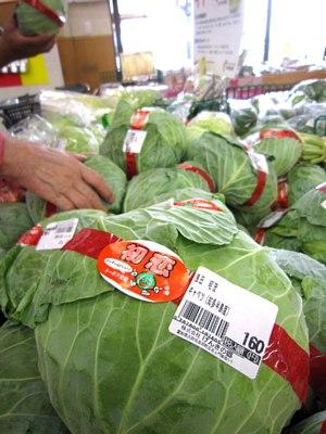 冬の野菜_c0141652_11294079.jpg