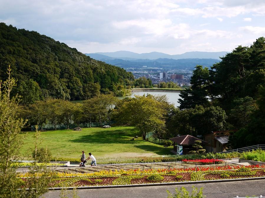 和歌山県植物公園緑花センター _b0093754_22323395.jpg