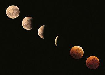 60歳過ぎたら聴きたい歌(35) ~ Moondance ~_b0102572_22223717.jpg