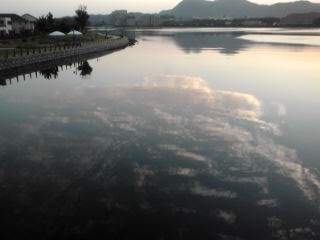 朝の景色_b0214473_1963272.jpg