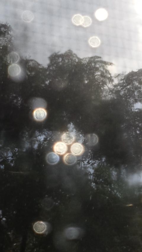 「お天気雨」のイメージ_f0155808_932456.jpg