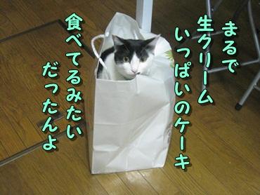 b0151748_15283275.jpg