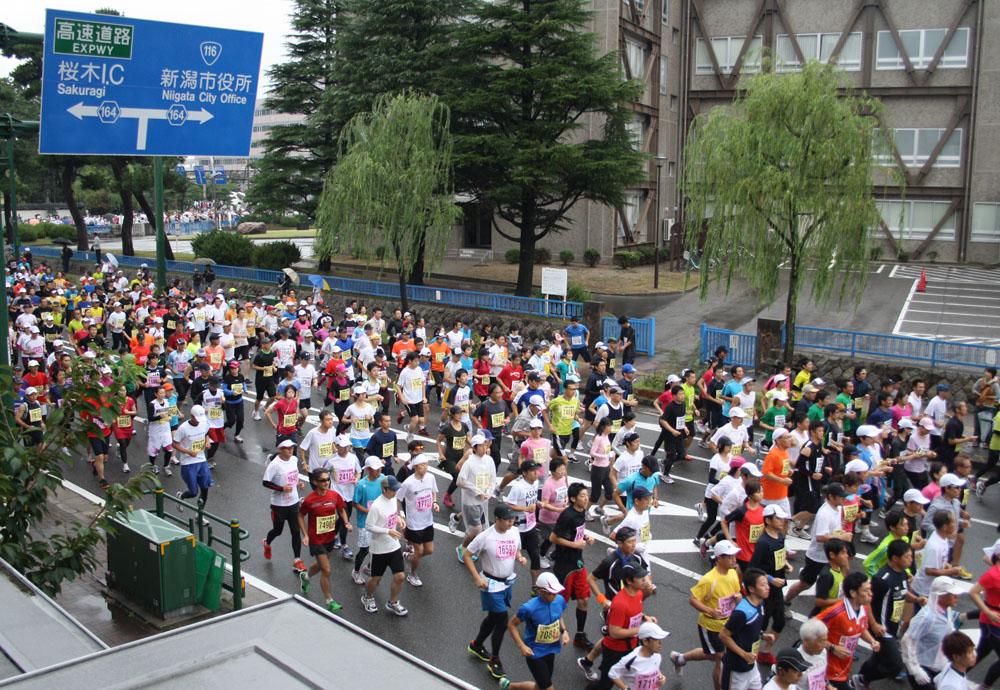 新潟シティマラソン2012速報・高橋尚子さんがいました。_d0178448_9512596.jpg