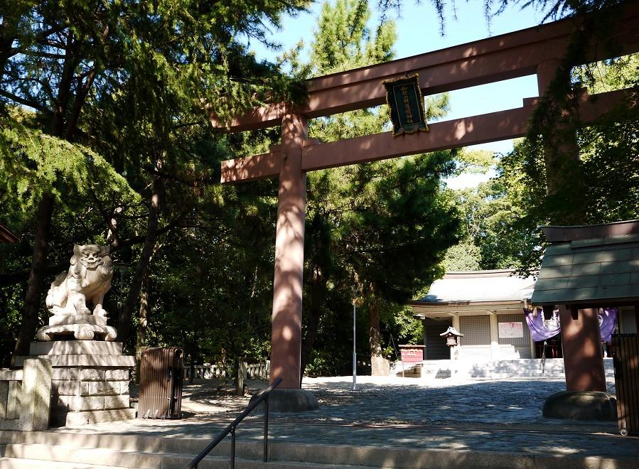 和歌山城公園にて_b0093754_22321044.jpg