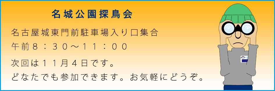 f0160773_17597.jpg