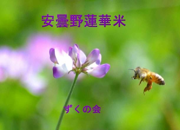 f0140209_20325638.jpg