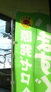 【2013参院選】体育の日青空を背に原発ゼロ 【緑の党】_e0094315_8421113.jpg