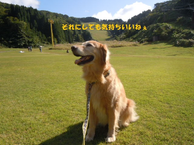 f0114128_1750613.jpg