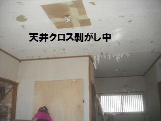 f0031037_2122748.jpg