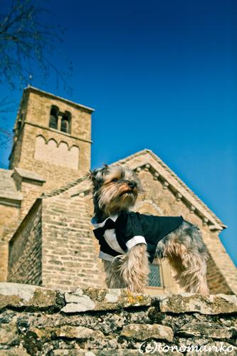 13世紀の小さな教会で… シャトーウェディング_c0024345_7453488.jpg