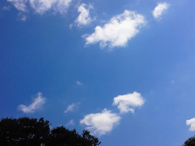 秋晴れの月曜日_c0140599_11331887.jpg