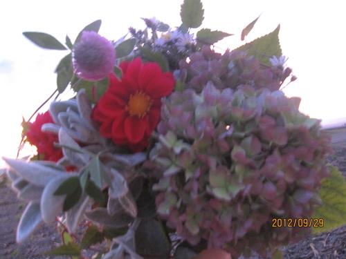 ・。・綺麗な空・。・。_f0231042_15531360.jpg